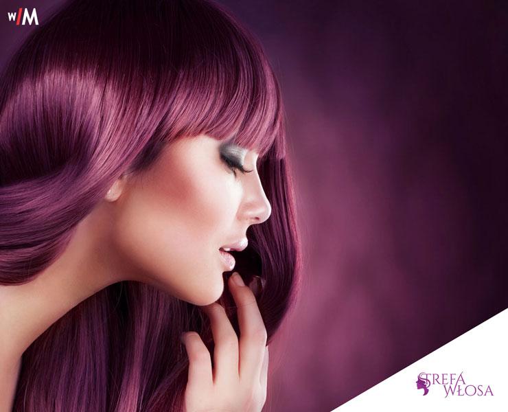 realizacja strefa włosa